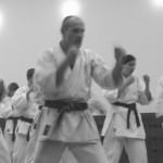 karate (puste ręce)