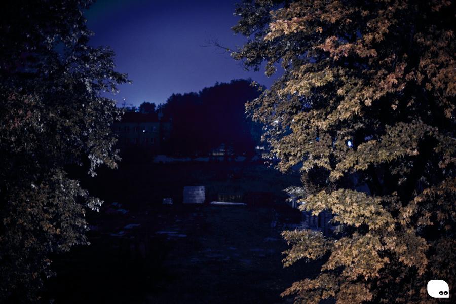 nocnywidok